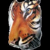 Big Tiger Head